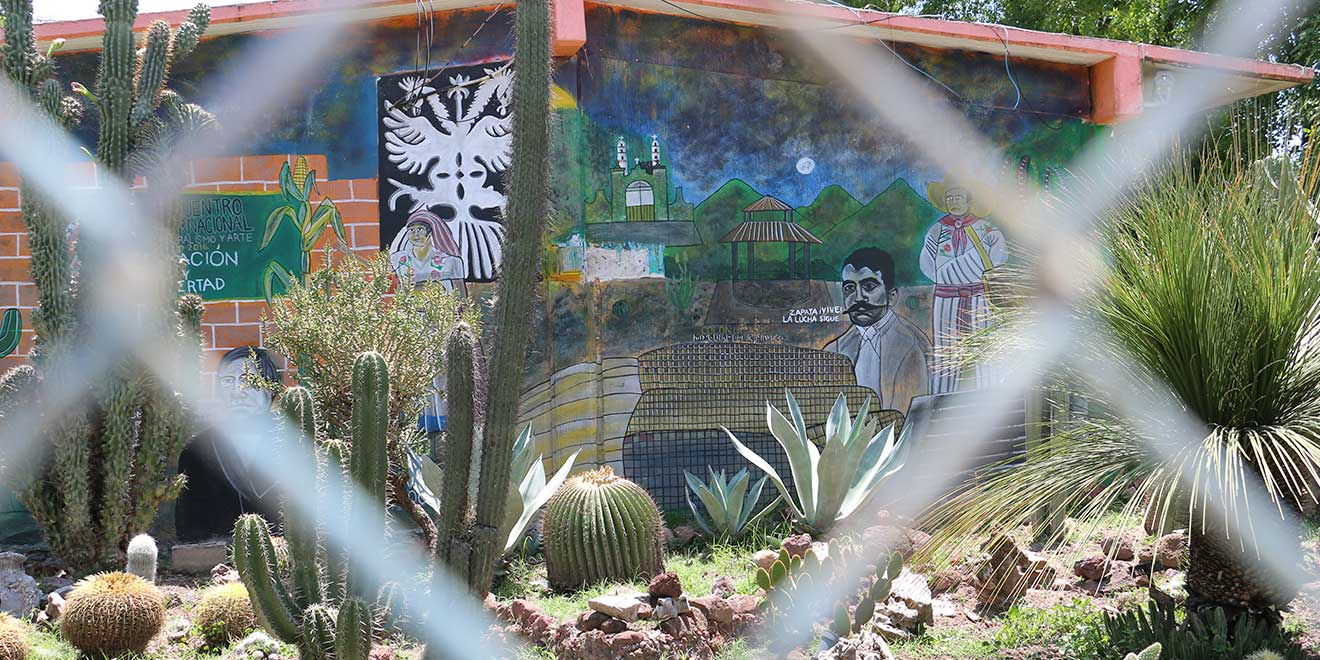 La Colonia De Los 160 Murales En Hidalgo Habitan Entre El Arte Y El