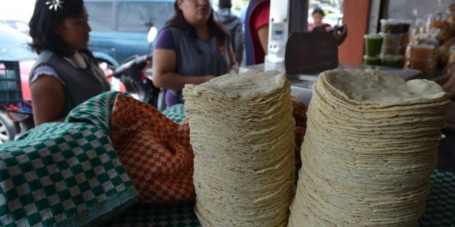 ¿Aumentará el costo del kilo de tortillas en Hidalgo?