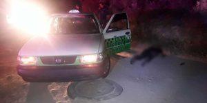 Asesinan a un taxista en Mineral de la Reforma