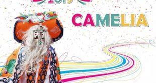 Carnaval Camelia