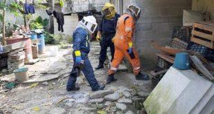 Reportan ataque de abejas en Huejutla
