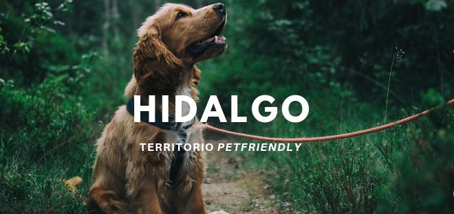 Hidalgo Territorio Petfriendly