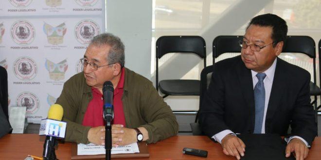 Asesor electoral