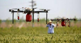 Introducen drones en la agricultura de Hidalgo