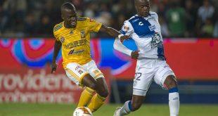 Arrancarán los cuartos de final en el estadio Hidalgo