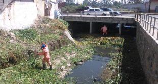 Por desbordamiento de un dren, revisarán conexión con colector